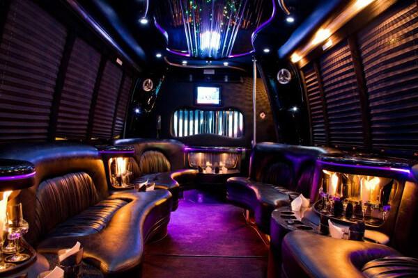 15 Person Party Bus Rental Florida